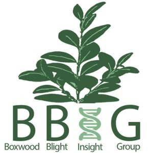 Boxwood Blight Insight Group logo