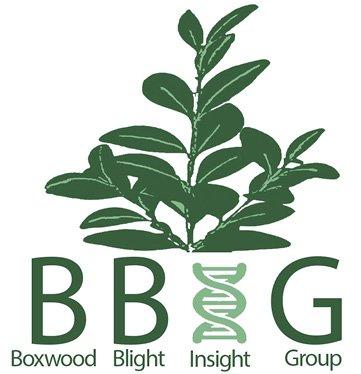 Boxwood Blight Insight Group logo